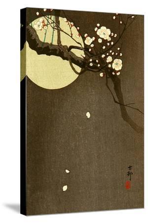 Flowering Plum and Moon