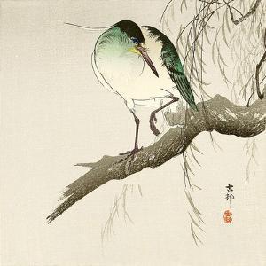 Green Heron on Branch by Koson Ohara