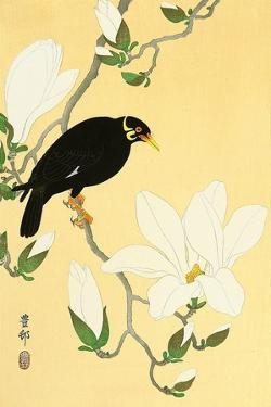 Indian Hill Minor and Magnolia by Koson Ohara