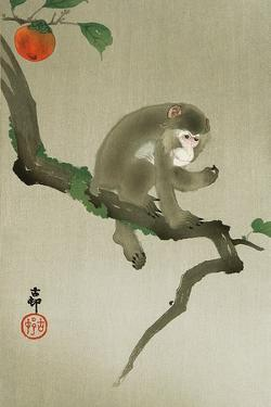 Monkey and Persimmon by Koson Ohara