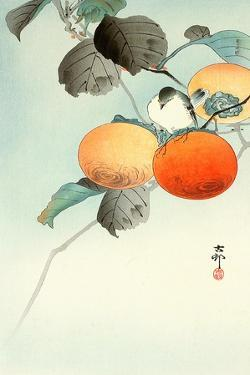 Nuthatcher Atop Persimmon by Koson Ohara