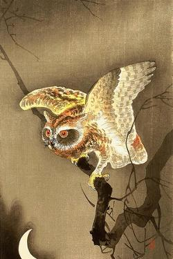 Owl and Crescent Moon by Koson Ohara