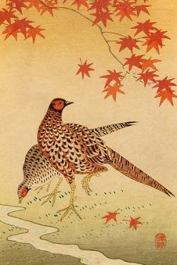 Pheasants by Koson Ohara