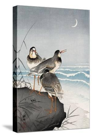 Three Plovers, Waves and Crescent Moon