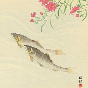 Trouts and Wild Pink by Koson Ohara