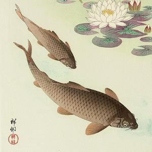 Two Carp and Water Lily Pad by Koson Ohara