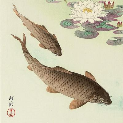 Two Carp and Water Lily Pad
