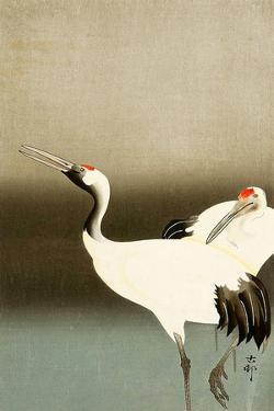 Two Cranes by Koson Ohara