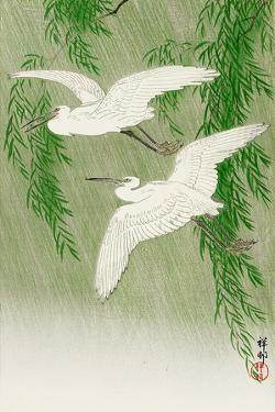 Two Egrets and Willow Tree by Koson Ohara