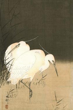 Two Egrets at Night by Koson Ohara