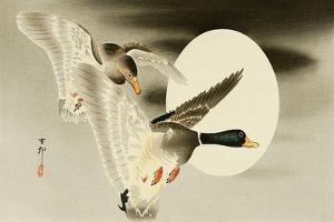Two Mallard Ducks and the Moon by Koson Ohara