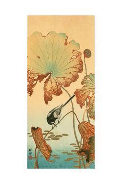 Wagtail and Lotus by Koson Ohara