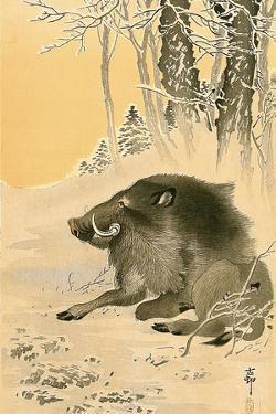 Wild Boar by Koson Ohara