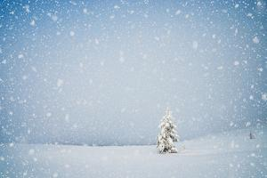 Winter Landscape with Snow-Covered Fir-Tree in a Lonely Mountain Valley. Christmas Theme with Snowf by Kotenko