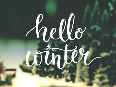Hello Winter Typography Overlay on Blurred Photo of Christmas Trees. Lettering Banner for Greeting