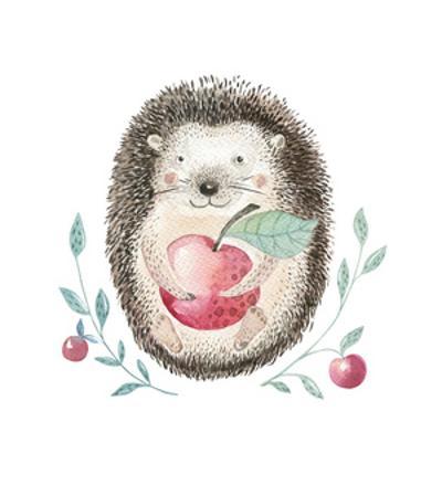 Watercolor Hedgehog by Kris_art