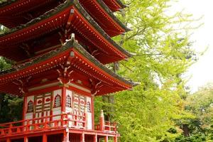 A Japanese Pagoda in the Japanese Tea Garden, the U.S. Oldest Public Japanese Garden by Krista Rossow