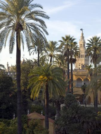 Alcazar Palace Gardens with the Giralda Tower in Background
