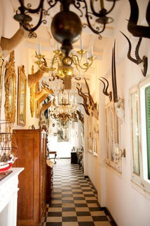 An Antique Showroom Specializing in Chandeliers, Taxidermy, and Nautical Decor
