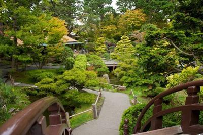 Bridges Link the Paths in the Japanese Tea Garden, the Oldest Public U.S. Japanese Garden