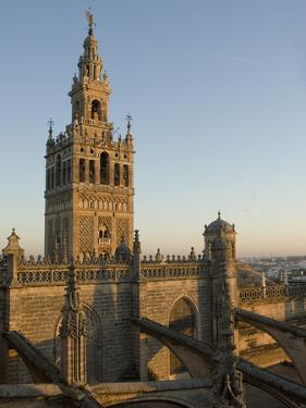 View of the Giralda Tower and the Rooftop of the Cathedral of Seville by Krista Rossow