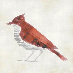 The Red Birdy by Kristin Emery