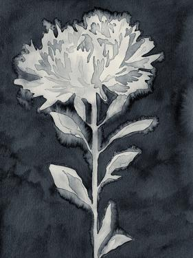Dream Leaves by Kristine Hegre