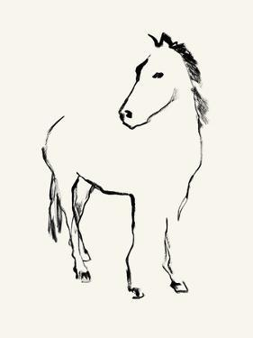 Equine Study by Kristine Hegre