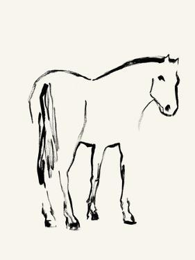 Equus Illustration by Kristine Hegre