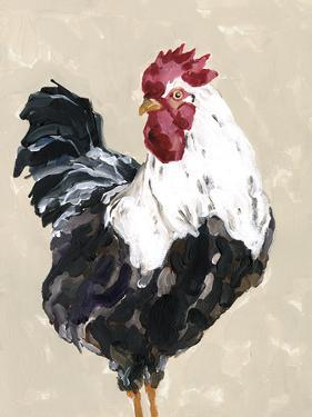 Farmyard Friends - Chicken by Kristine Hegre