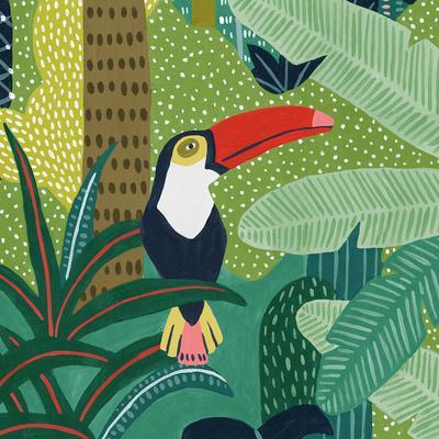 Tropical Aves - Focus