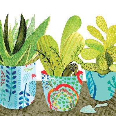 Floral Cacti Pots 1