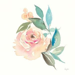 Watercolor Blossom II by Kristy Rice