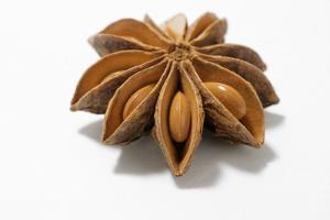 A Star Anise on White Background by Kröger and Gross