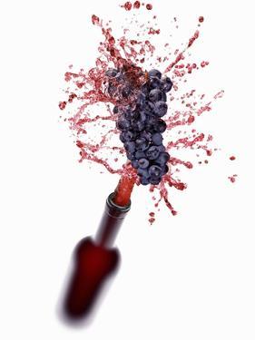 Red Wine Splashing Out of Bottle by Kröger & Gross