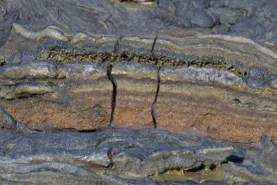 Pahoehoe lava, close-up of ribbon-like shapes, Sullivan Bay, Santiago by Krystyna Szulecka