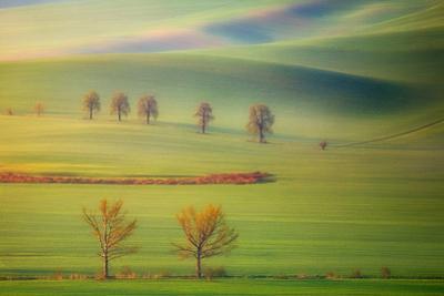 Fields by Krzysztof Browko