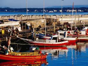 Fishing Boats in Harbour, Punta del Este, Maldonado, Uruguay by Krzysztof Dydynski