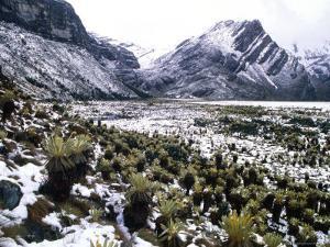 Snowy Mountains in Aruaco Indian Hamlet in the Sierra Nevada De Santa Maria, Nabusimake, Colombia by Krzysztof Dydynski