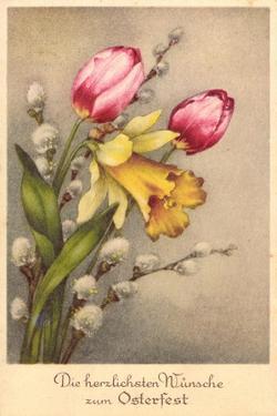 Künstler Glückwunsch Ostern, Tulpen, Weidenkätzchen
