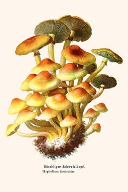 Cat and Noble Woman by Kuniyoshi Utagawa