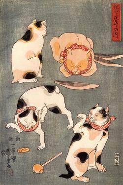 Four Cats in Different Poses by Kuniyoshi Utagawa