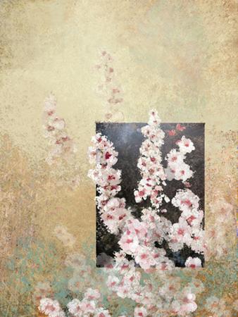 Cherry Blossoms 3 by Kurt Novak