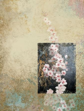 Cherry Blossoms 4 by Kurt Novak