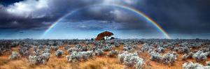 Rainbow in the Australian Desert by kwest19