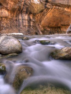 View Along the Hike Through the Zion Narrows in Southern Utah's Zion National Park by Kyle Hammons