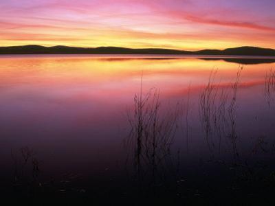 Sunrise on Klamath Lake Wild Refuge, CA by Kyle Krause