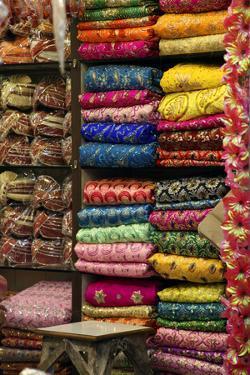 Colorful Sari Shop in Old Delhi Market, Delhi, India by Kymri Wilt