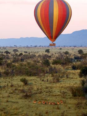 Hot-Air Ballooning, Masai Mara Game Reserve, Kenya by Kymri Wilt