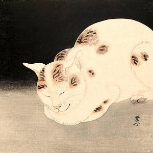 Sleeping Cat by Kyosai Kawanabe